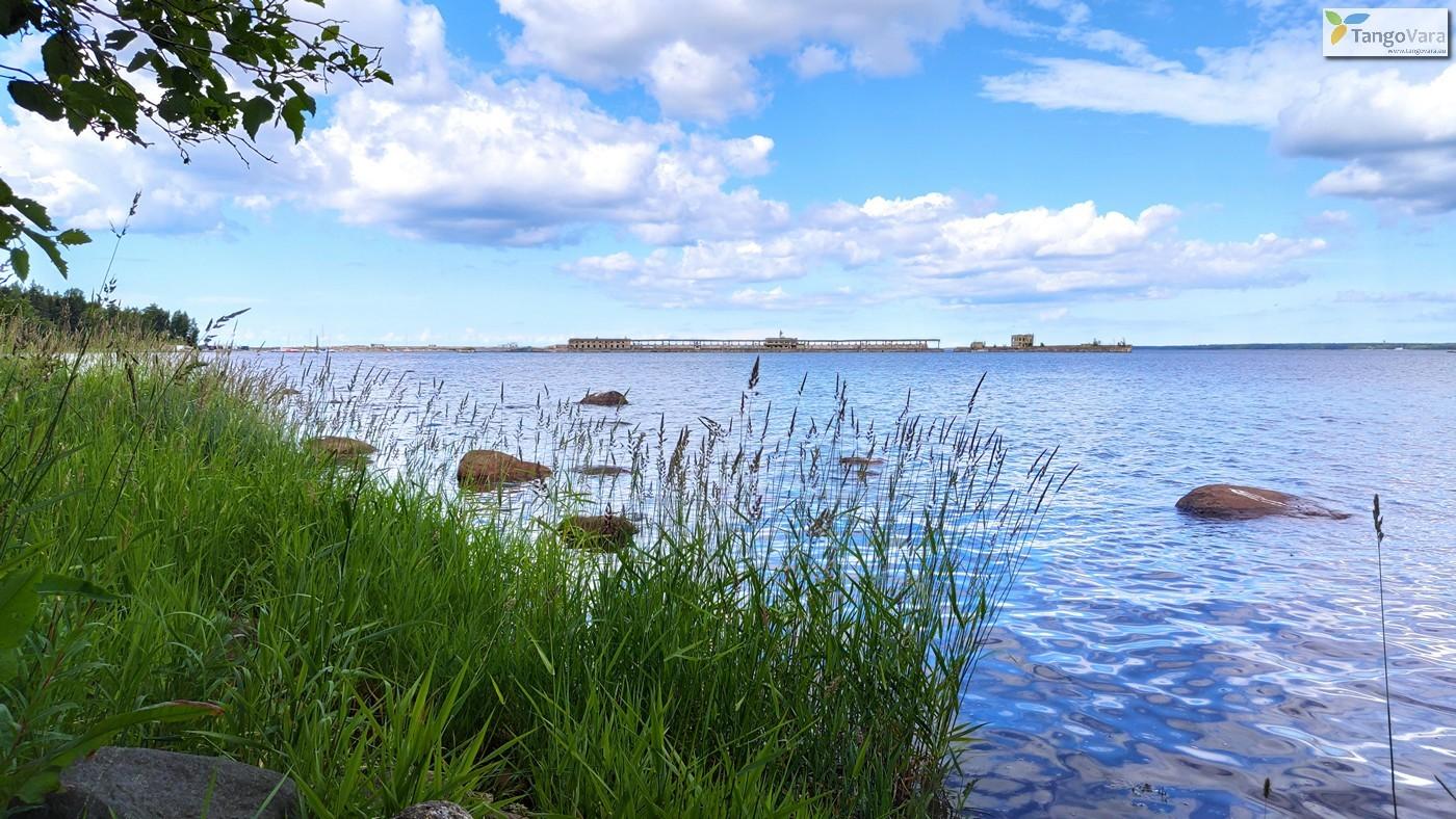 Ilmari-Kuusalu-58