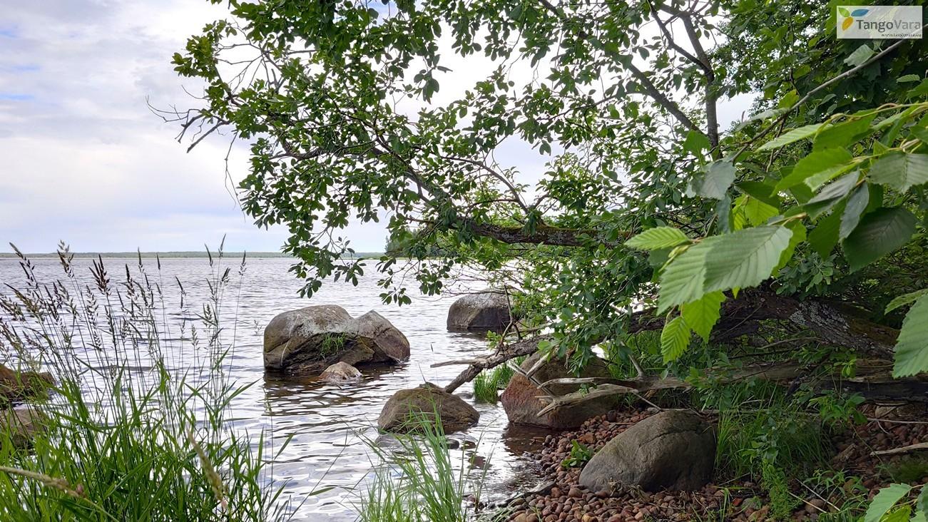 Ilmari-Kuusalu-63