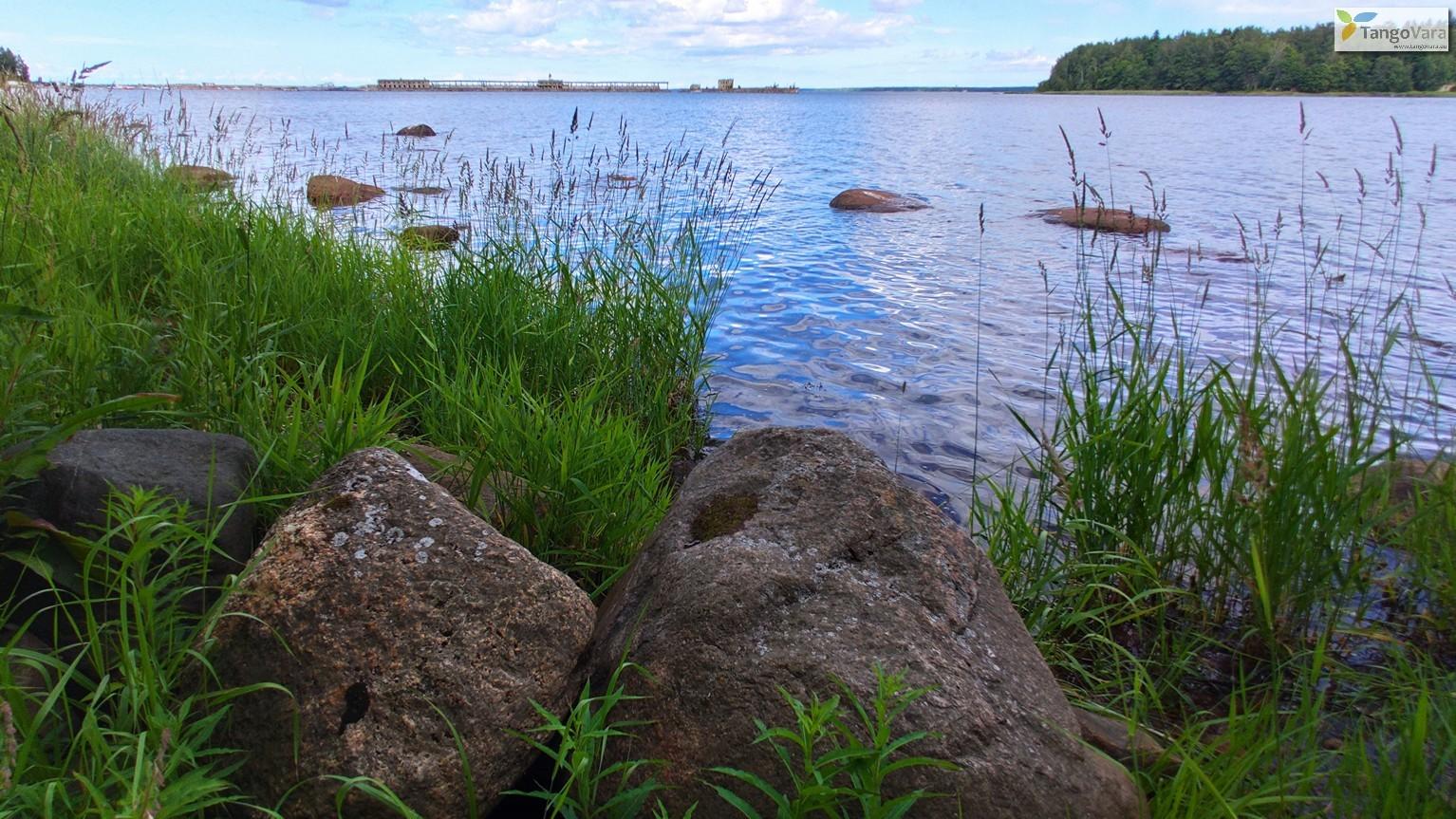 Ilmari-Kuusalu-75