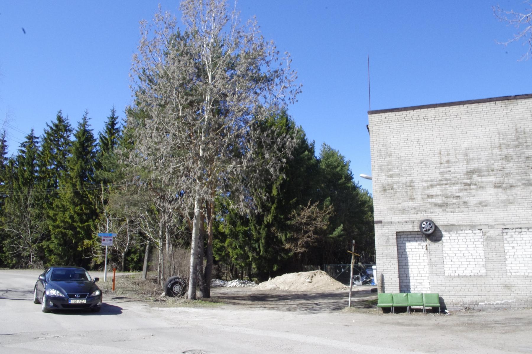 Siduri-2-Veerenni-54-3